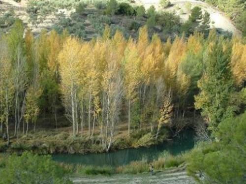 Ruta de senderismo por el río Peralta en Jaén